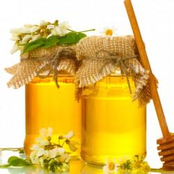 чернокленовый мед фото
