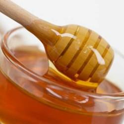 чернокленовый мед свойства
