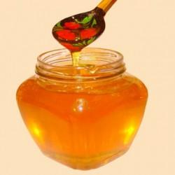 мед донник