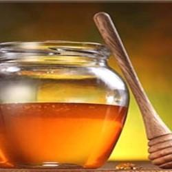 мед донник свойства